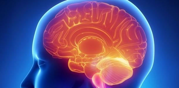 Ćwiczenie pamięci sposobem na doskonałą koncentrację